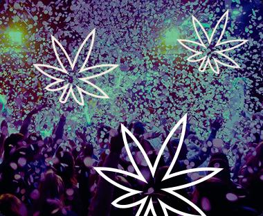 420 Festivals Directory