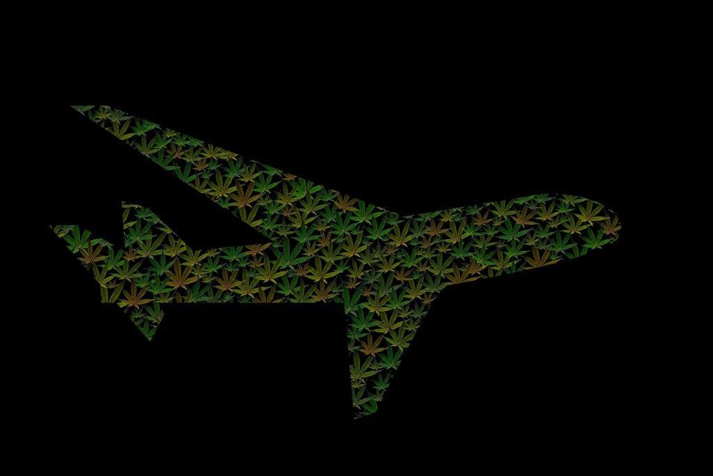 plane made with marijuana
