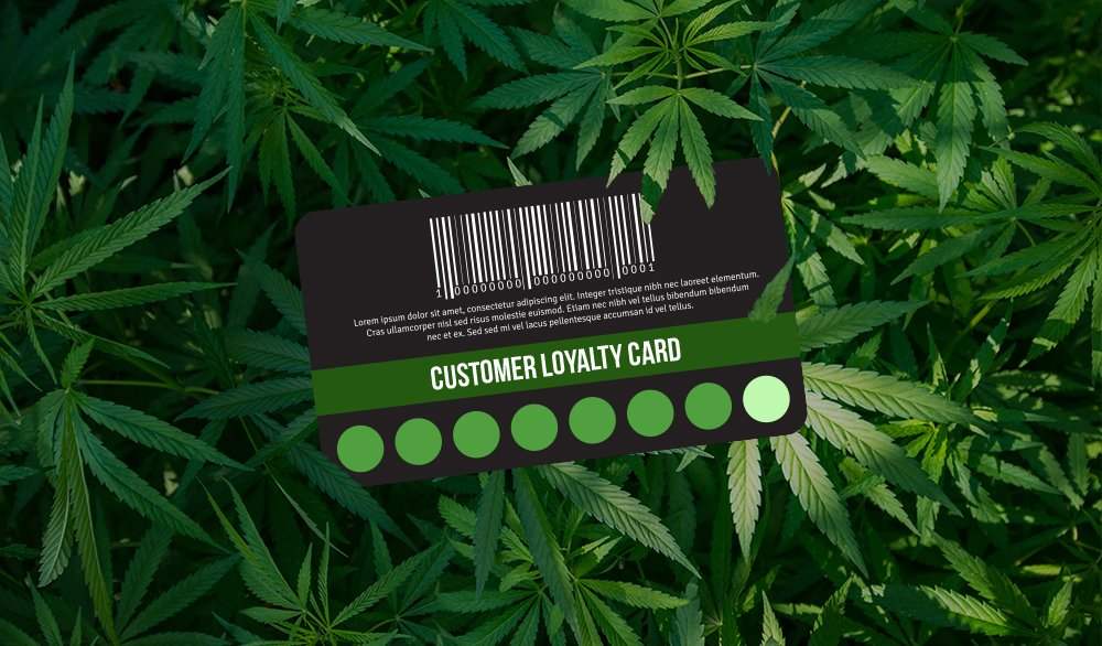 Customer Loyalty in the MJ industry
