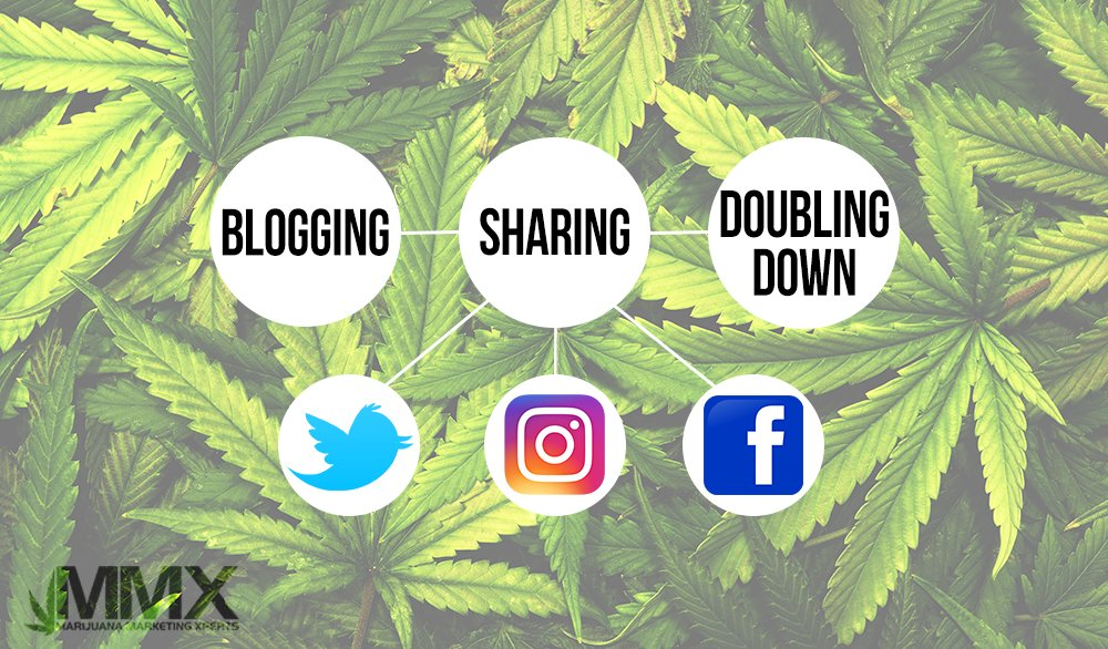 Social media icons on a marijuana background