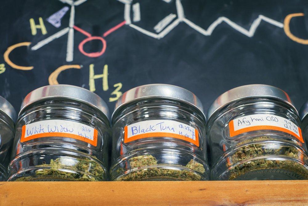 Marijuana Dispensary Marketing Plan