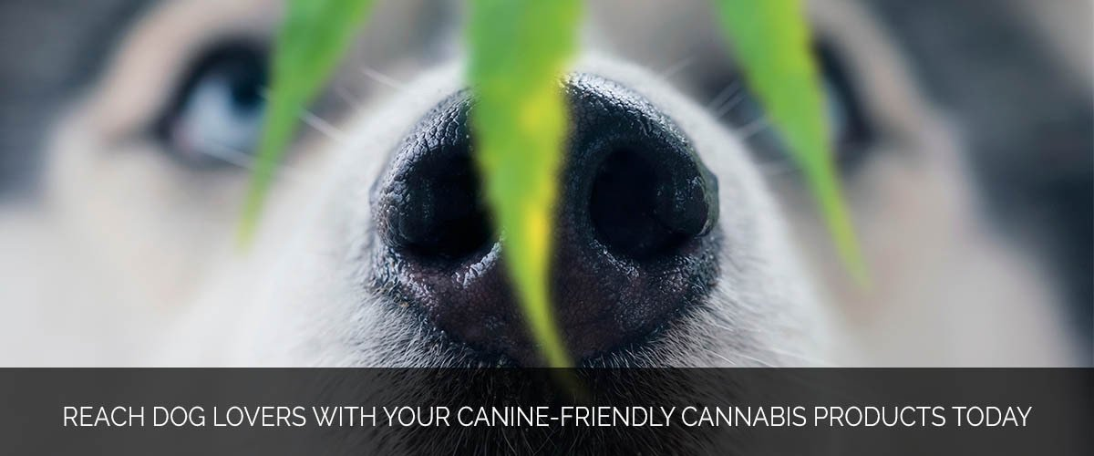 Reach dog lovers with your canine-friendly cannabis products today - Marijuana Marketing Xperts