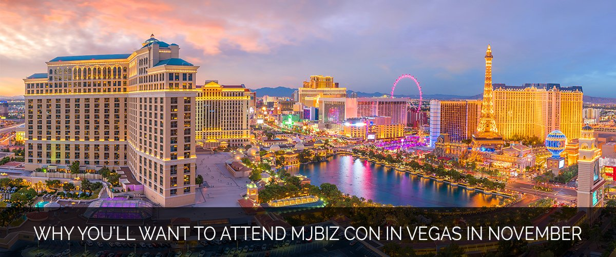 Why You'll Want to Attend MJBiz Con in Vegas in November - Marijuana Marketing Xperts