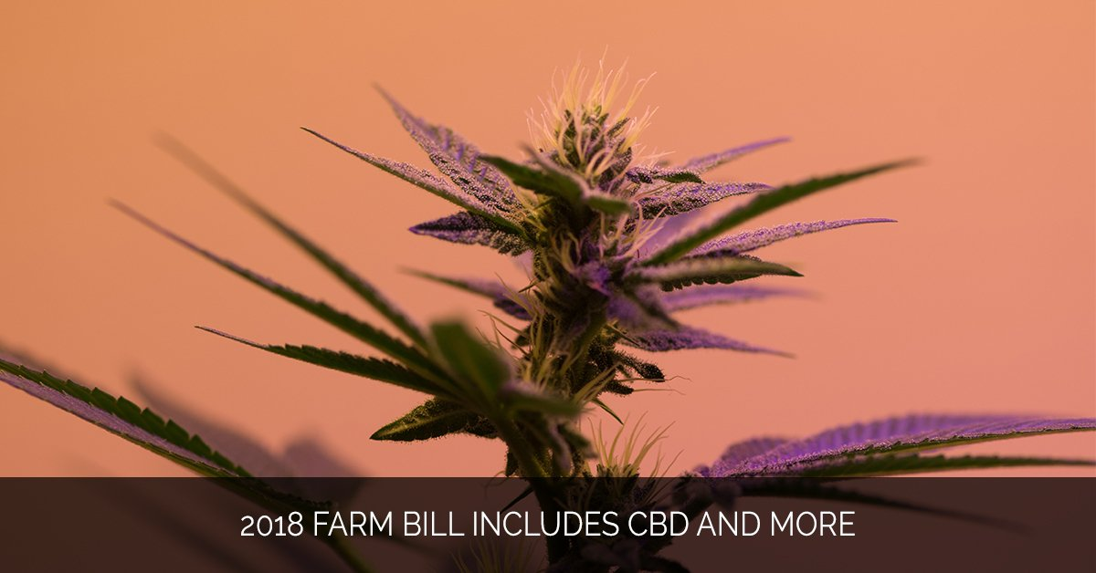 2018 Farm Bill Includes CBD and More - Marijuana Marketing Xperts