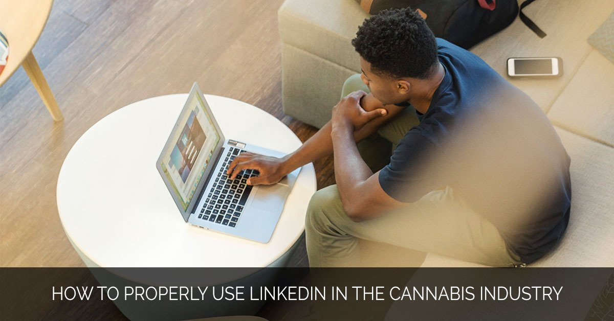 How to Properly Use LinkedIn in the Cannabis Industry - MMX