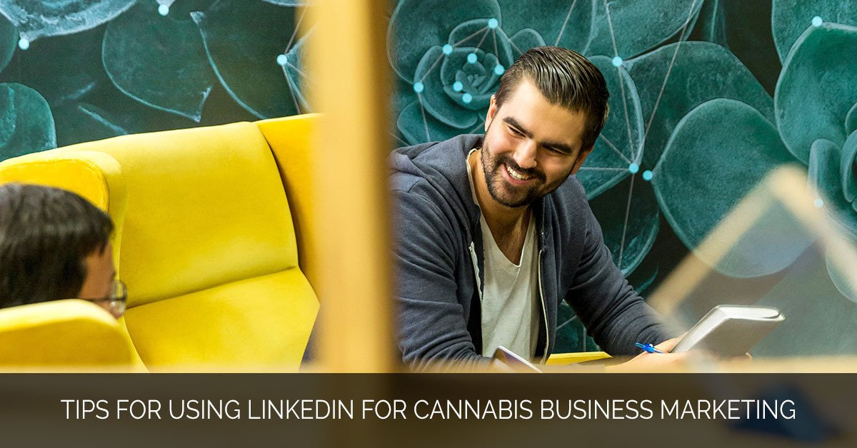 Tips for Using LinkedIn for Cannabis Business Marketing - MMX