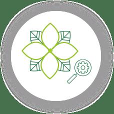 icon-circle-local-seo