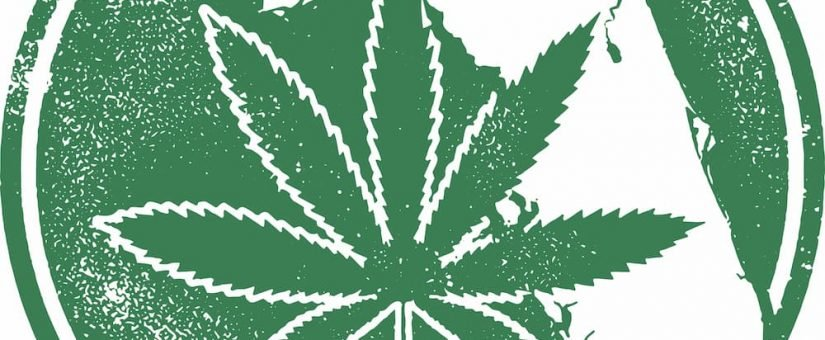 Florida's Marijuana Market Is On The Rise – Tips to Make Your Dispensary Stand Out