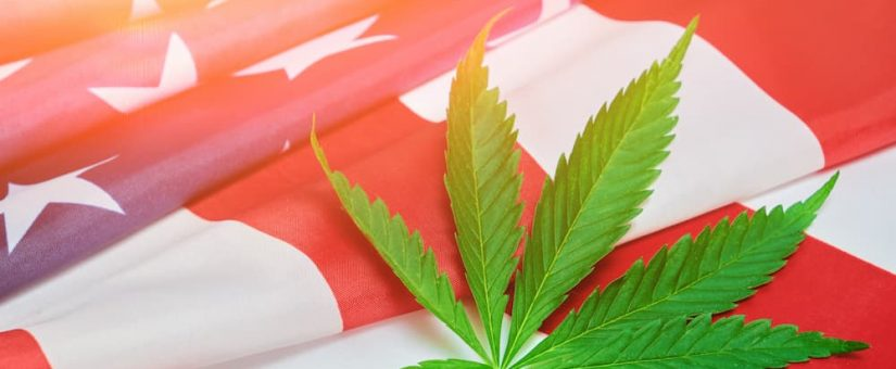 The Future of Cannabis Under Biden-Harris